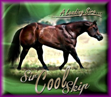 A bunch of Cicle Bar Ranch`s Quarter Horses. Sir_cool_skip_kelly_graphics_ad2