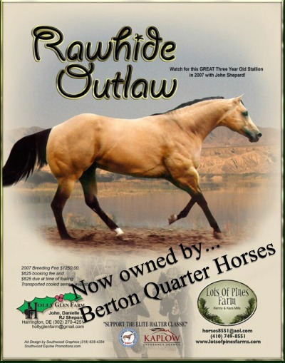 A bunch of Cicle Bar Ranch`s Quarter Horses. Rawhide_ad_with_text